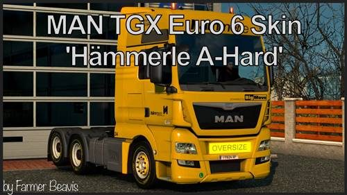hammerle-skin-for-man-tgx